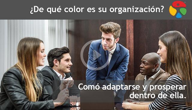 Vídeo: ¿De qué color es su organización?